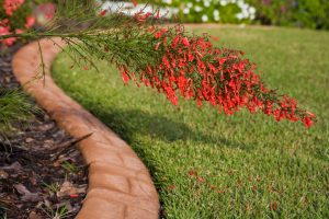 3 Factors to Consider When Choosing Landscaping Edging for Your Construction Site